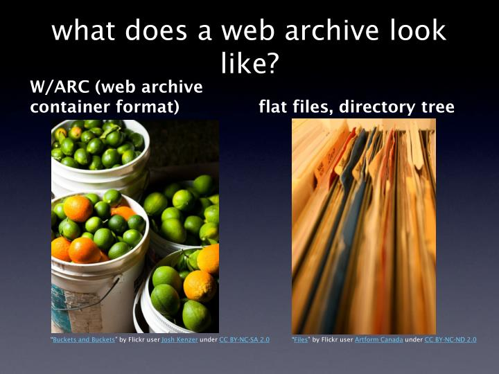 What does a web archive look like