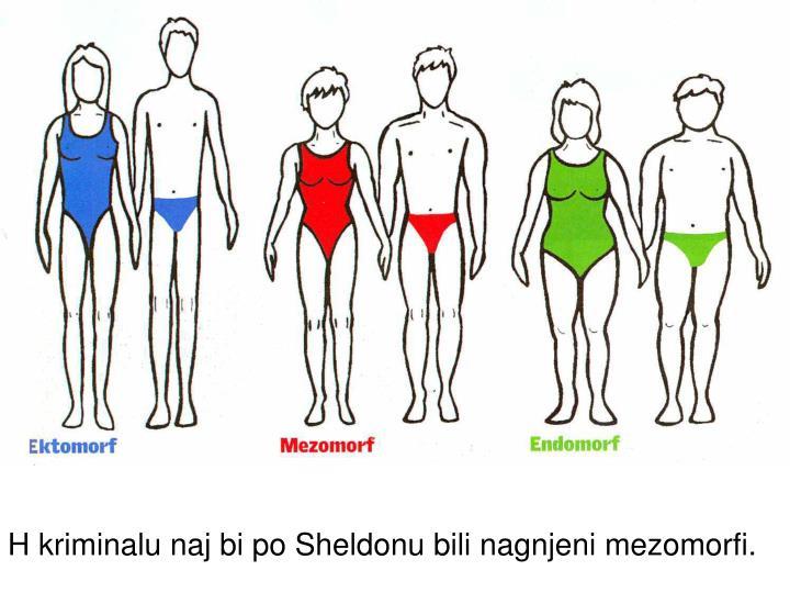H kriminalu naj bi po Sheldonu bili nagnjeni mezomorfi.