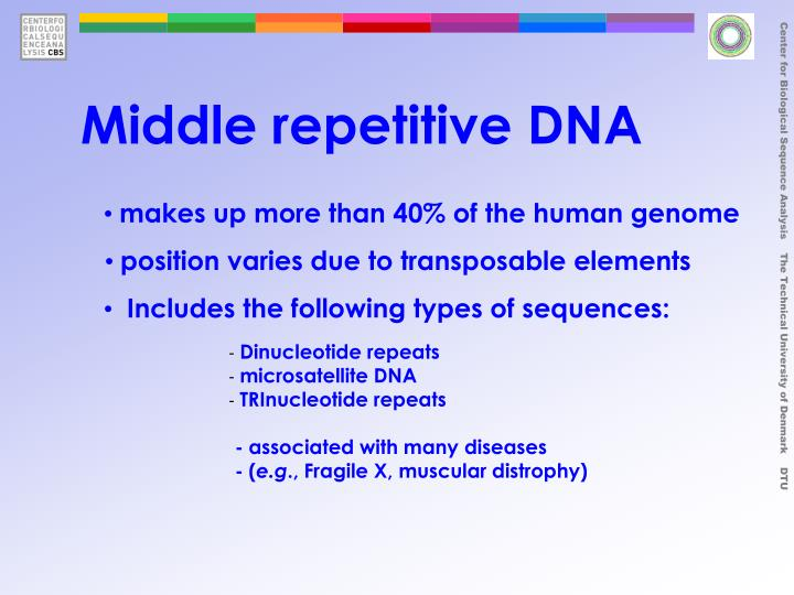 Middle repetitive DNA