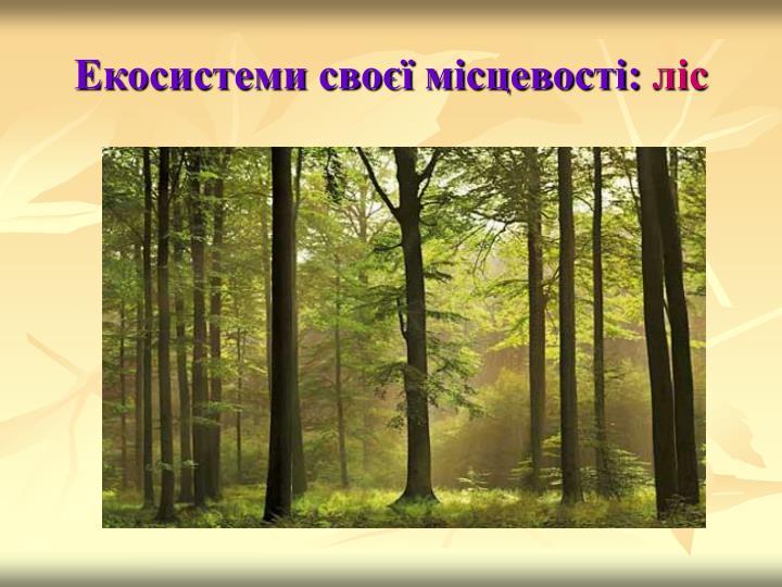 Екосистеми своєї місцевості: