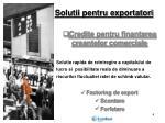 solutii pentru exportatori1