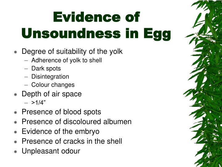 Evidence of Unsoundness in Egg