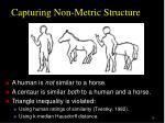 capturing non metric structure