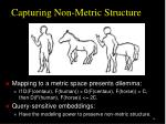 capturing non metric structure1
