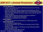 esf 17 animal protection1