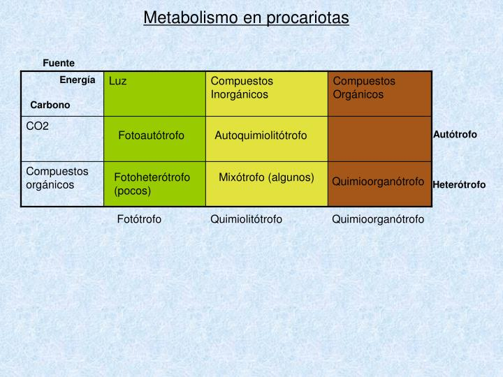 PPT - Metabolismo de Procariotas PowerPoint Presentation..