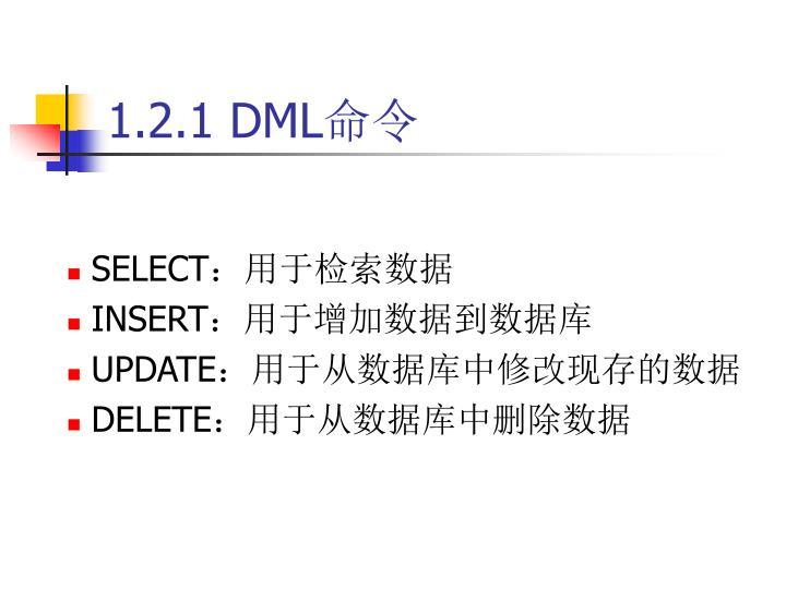 1.2.1 DML