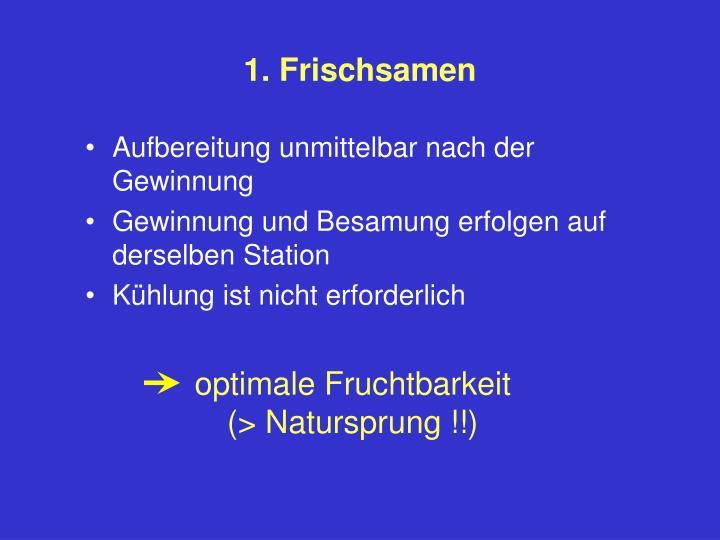 1. Frischsamen