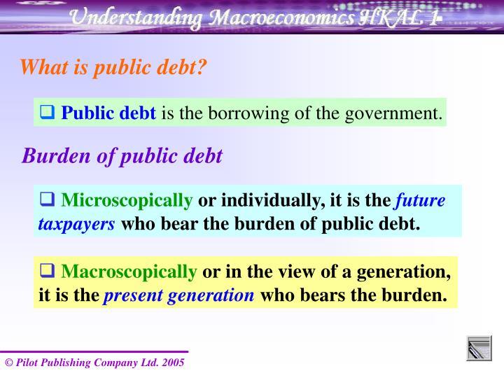 What is public debt?