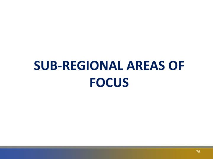 SUB-REGIONAL AREAS OF FOCUS