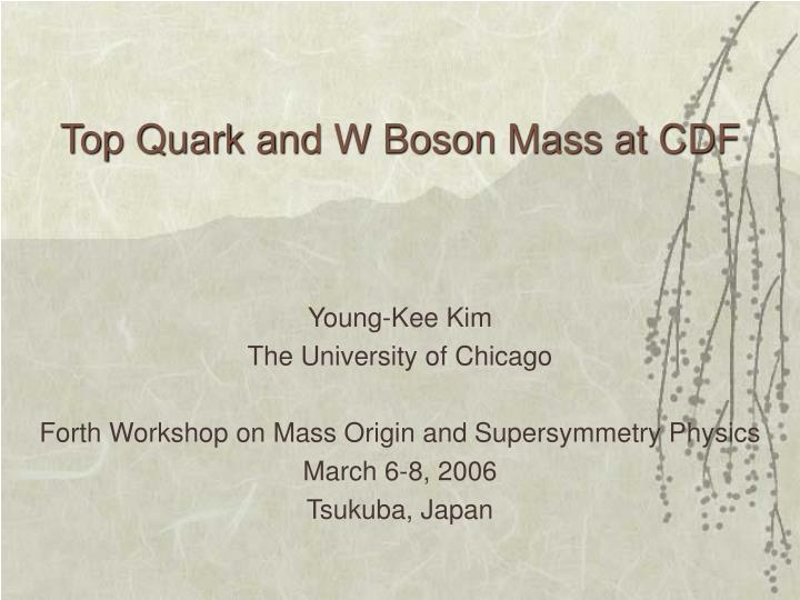 Top quark and w boson mass at cdf