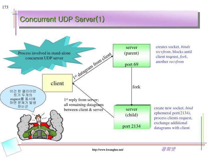 Concurrent UDP Server(1)