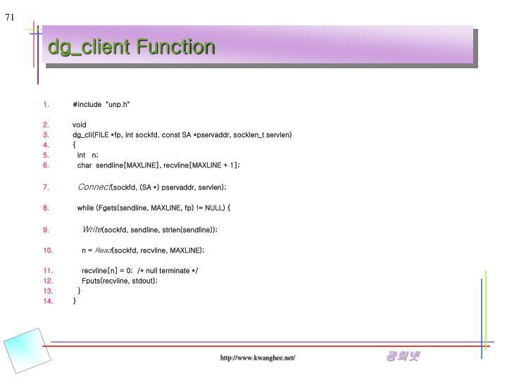 dg_client Function