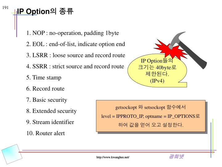 IP Option
