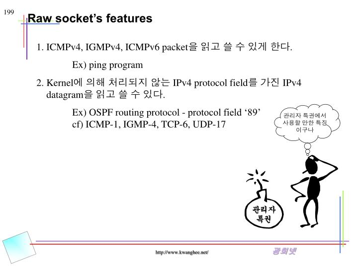 Raw socket's features