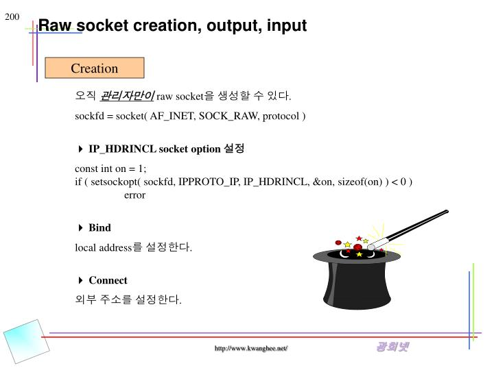 Raw socket creation, output, input