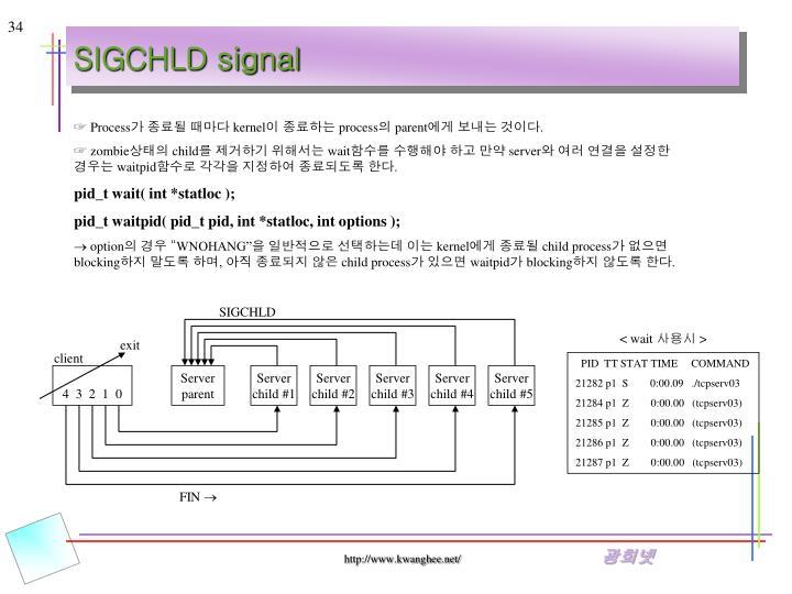 SIGCHLD signal