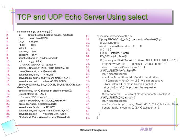 TCP and UDP Echo Server Using select