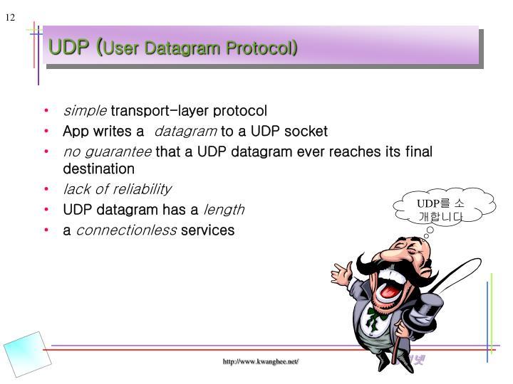 UDP (