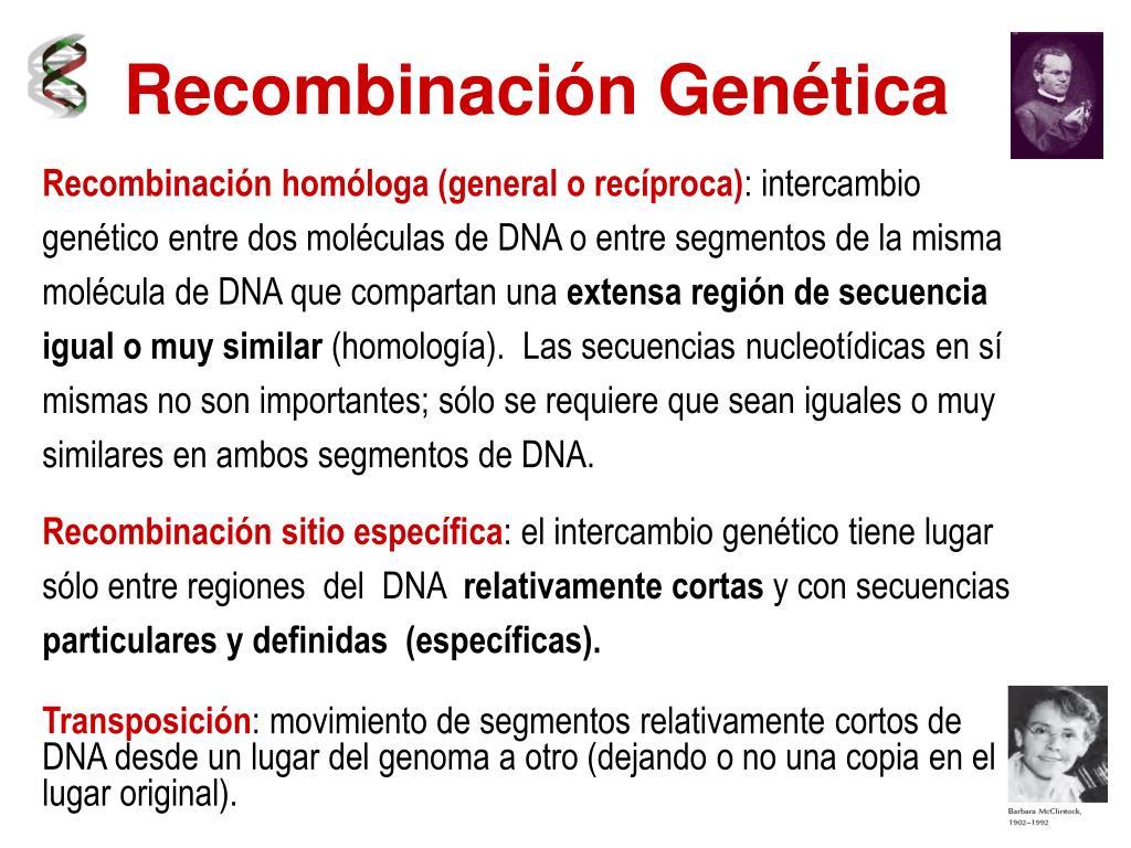 Genetica bacteriana curso de microbiología i ppt video online.