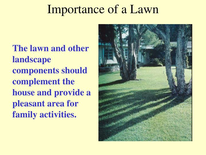 importance of a lawn n.