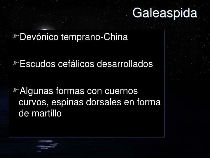 Galeaspida