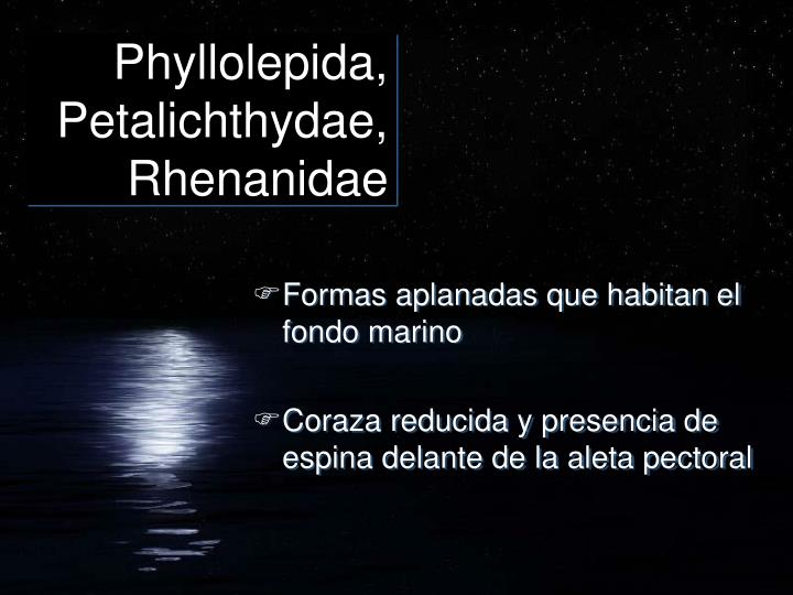 Phyllolepida, Petalichthydae, Rhenanidae