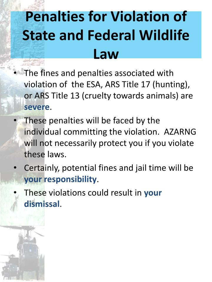 Penalties for Violation of State and Federal Wildlife Law