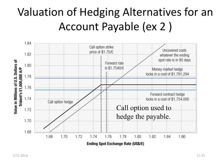 Valuation of Hedging Alternatives for an Account Payable (ex 2 )
