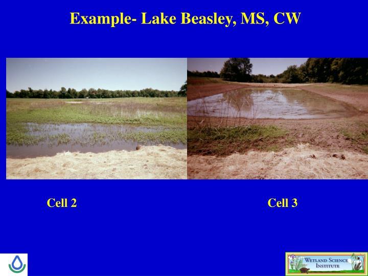 Example- Lake Beasley, MS, CW