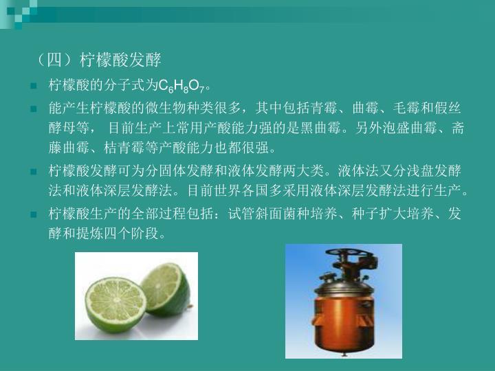 (四)柠檬酸发酵