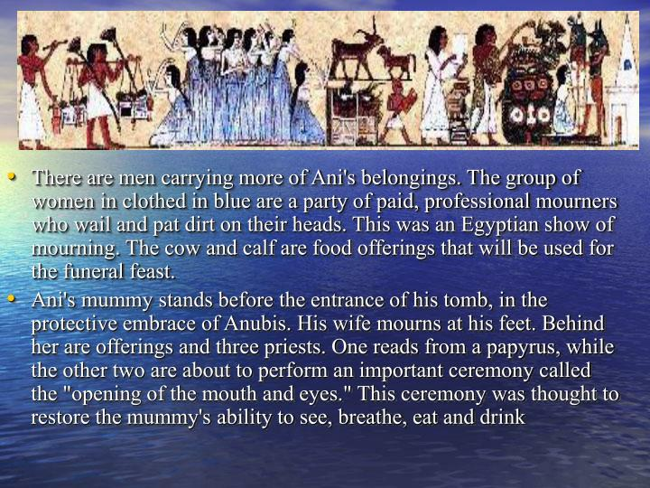 There are men carrying more of Ani's belongings. The group of women in clothed in blue are a party of paid, professional mourners who wail and pat dirt on their heads. This was an Egyptian show of mourning. The cow and calf are food offerings that will be used for the funeral feast.
