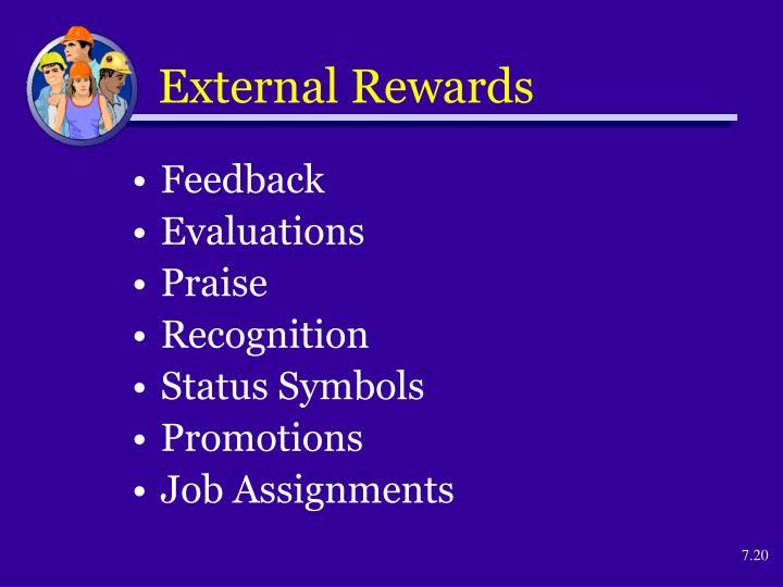 External Rewards