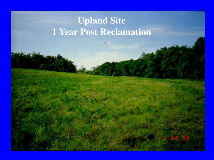 Upland Site