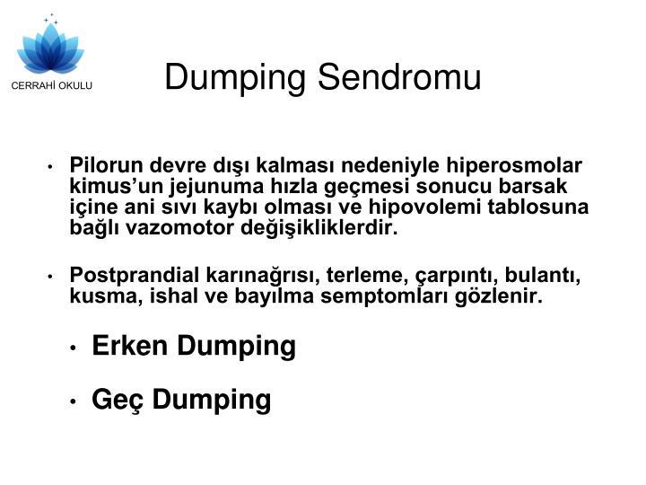 Dumping sendromu