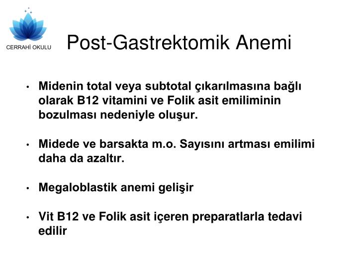 Post-Gastrektomik Anemi