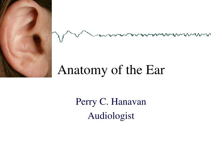 Ppt Anatomy Of The Ear Powerpoint Presentation Id7053759