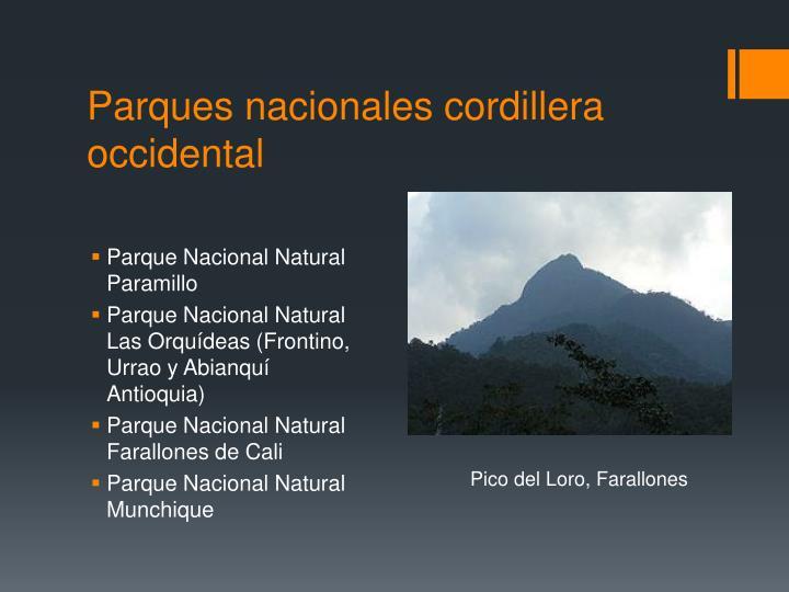Parques nacionales cordillera occidental