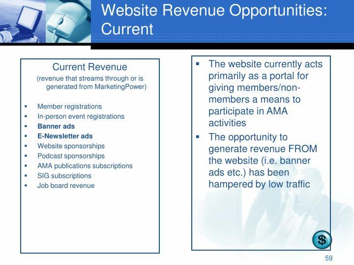 Website Revenue Opportunities: