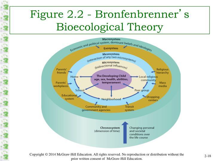 Figure 2.2 - Bronfenbrenner
