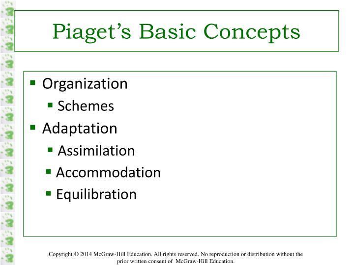 Piaget's Basic Concepts