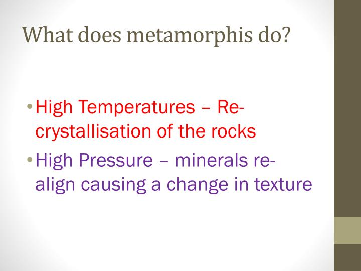 What does metamorphis do?