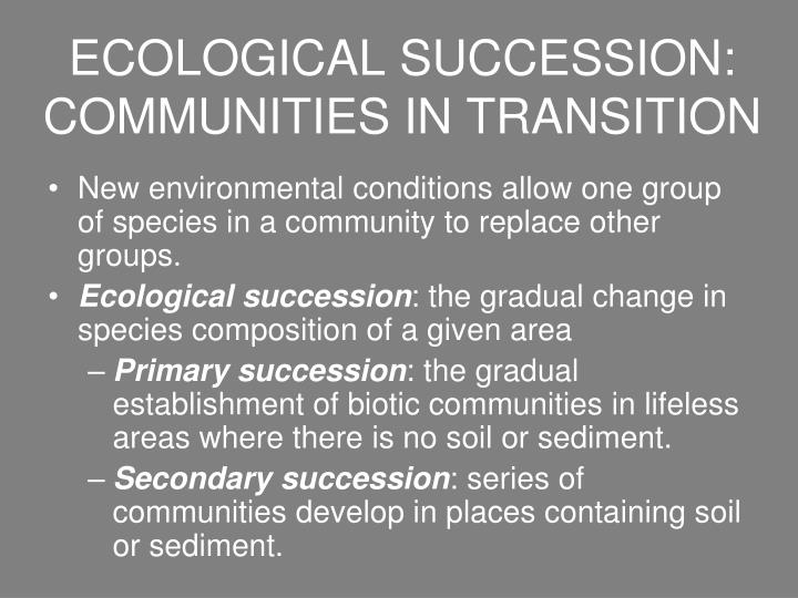 ecological succession communities in transition n.