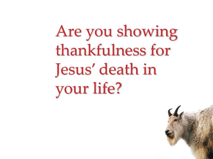Are you showing thankfulness for Jesus' death in your life?
