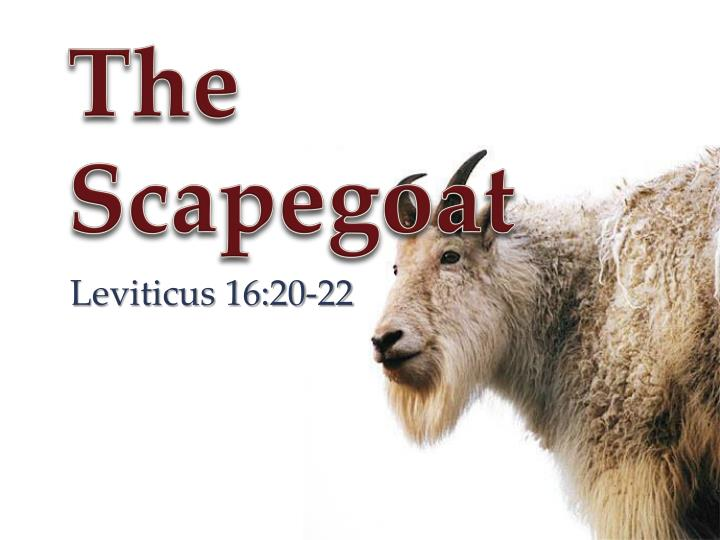 the scapegoat n.