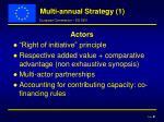 multi annual strategy 1