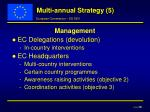 multi annual strategy 5