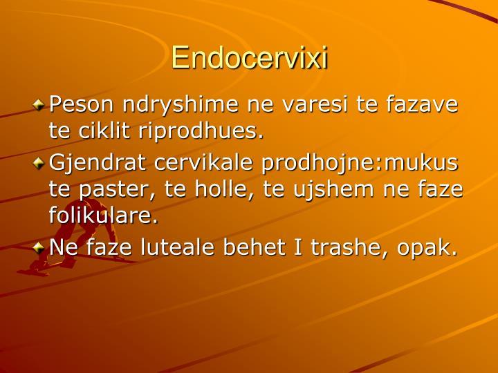 Endocervixi