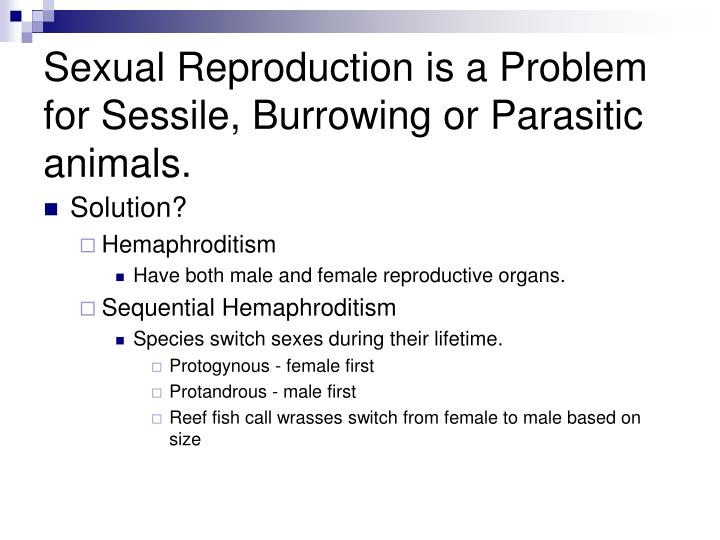 Sexual Reproduction is a Problem for Sessile, Burrowing or Parasitic animals.