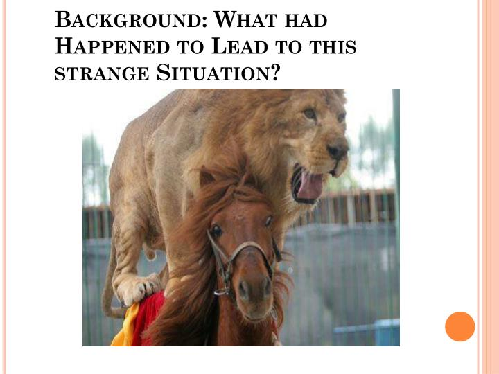 Background: What had Happened to Lead to this strange Situation?